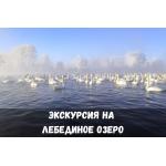 Экскурсия на Лебединое озеро (Советский район)